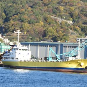21運鋼(貨物船)呉港内で見かけた貨物船。