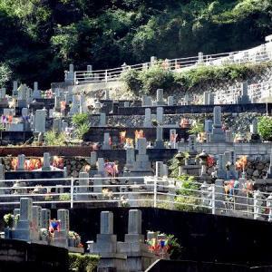 盆燈籠(ぼんとうろう、ぼんどうろう)が供えられた墓地。