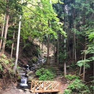 メグさんと「誰も知らない小さな滝」へ避暑に行ってきましたよ