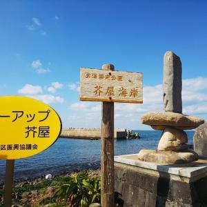 糸島のトトロの森~椿ロード~