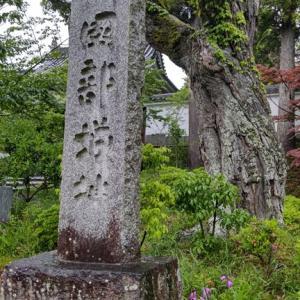 日本の城郭史で最後の建築物~園部城~