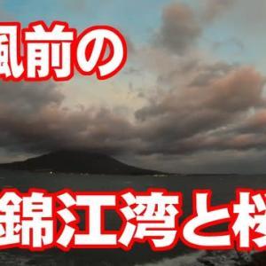 台風前の錦江湾と桜島