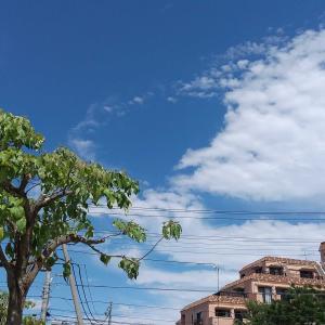 青い空を流れる雲