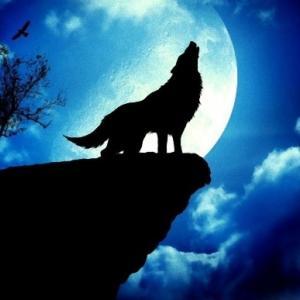 【銀狼記】 花火の後は月が満つ(06)