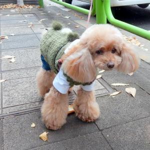 寒すぎる日はやっぱこれが旨い!!