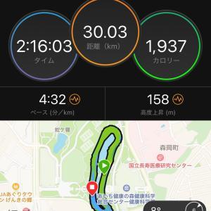 今週末も30kmペース走☆そろそろペースが…汗