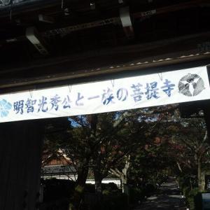 「麒麟がくる」明智光秀の眠る西教寺