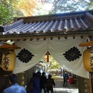 滋賀の紅葉の名所と言えば永源寺