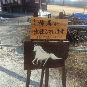 白馬の神馬が出社しています