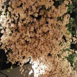 【最新版】歌舞伎町にある『エソラ(ESOLA)新宿店』いちご狩りビュッフェ・ケ-キバイキング・スイ-ツビュッフェ(2020年2月)♪♪