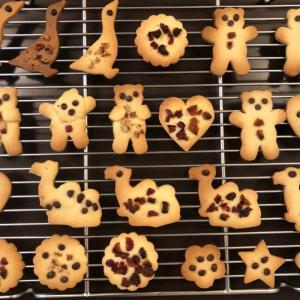 初めてのお菓子作り〜2歳児のクッキー作り体験