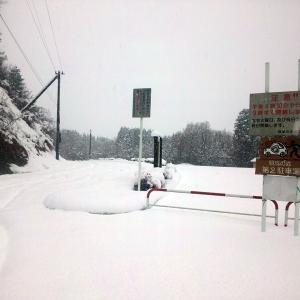 今シーズン最初の雪上ルートはお馴染みの所へ