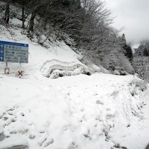 霧氷と樹氷の山 雪の牛岳