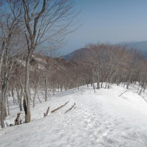 大鷲山と春の四重奏