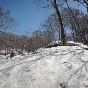 親不知から登る尻高山と朝日町の春の四重奏