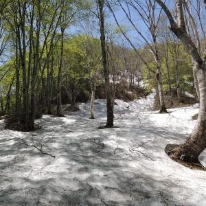 残雪の大品山・瀬戸倉山周回ルート