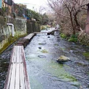 川を歩いて