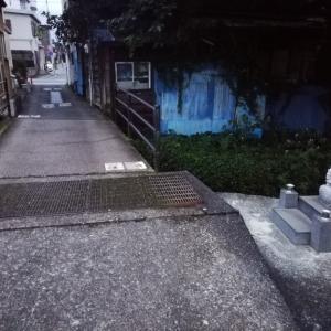 今日のMラさんぽ  ご近所川縁