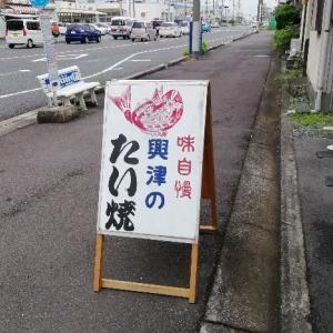 静岡市 興津 たい焼き 伏見