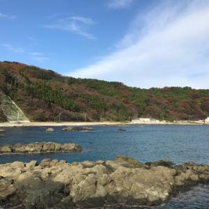 本日の粟島!海!釣り!温泉!