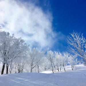 冬は、スキーもゴルフも♪ コエンザイムQ10包接型を買ってみた♪