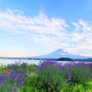富士山リトリート開催します✩.*˚