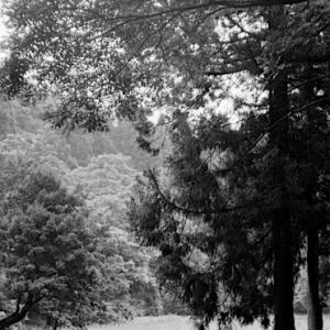 伝説にまつわる池。