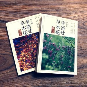 10月末まで・自然の恵みリーディング(無料&有料)ご案内