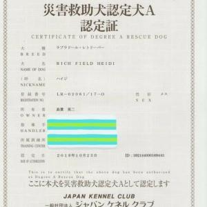 JKC災害救助犬認定