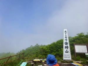 山に登ってきました。