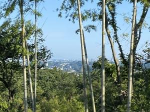 桔梗山、峯山を歩くハイキングコース。