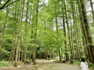 初めての生田緑地へ。