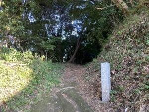 鎌倉古道 上の道