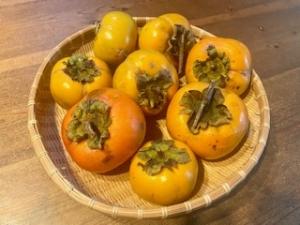 …秋は柿。