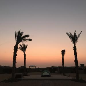 アラブ首長国連邦ドバイ&アブダビから帰国しました♪