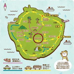 屋久島のレポ記事その2 ちょっと不思議で冷える思いをしたヤクスギランドの魅力ご紹介