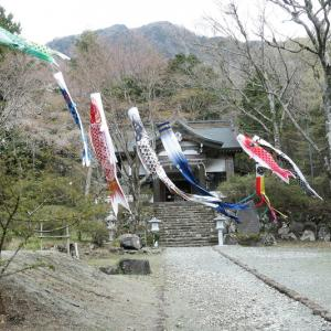 鯉が泳ぐ公時神社
