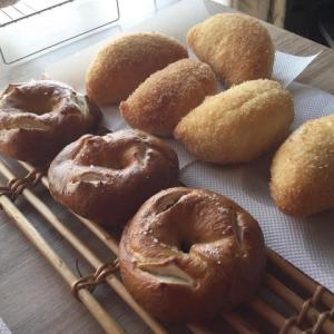レーズン酵母のプレッツェルベーグルとカレーパンレッスン
