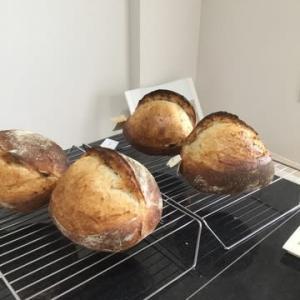 石窯オーブンで焼くハード系パン