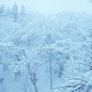 待望の雪と墨絵の景色