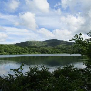 須川湖と山野草