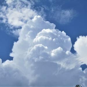 積乱雲と朝の散歩