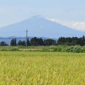 田園と鳥海山