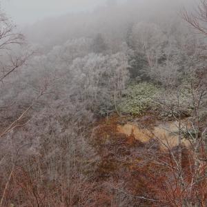 志賀高原 大沼池