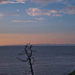 椎谷からの夕景