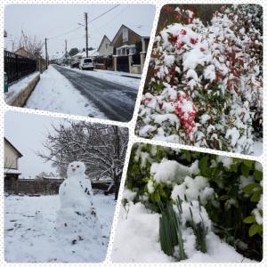 年末年始に作ったものと週末の雪
