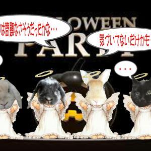ハロウィンパーティー開催♪『第4部』