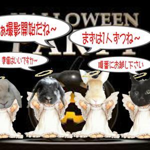 ハロウィンパーティー開催♪『撮影会その1』