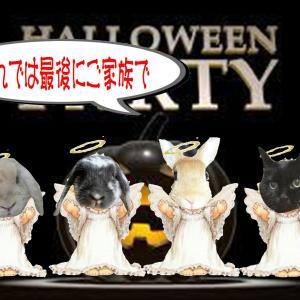 ハロウィンパーティー開催♪『撮影会その2 & ありがとう♪』