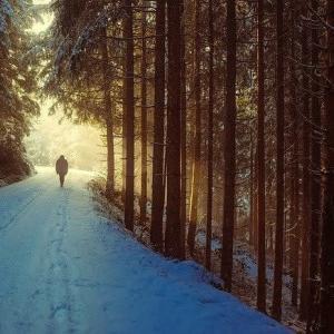 希望の手紙・・冬の教訓